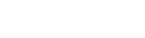 The Schaller Studio